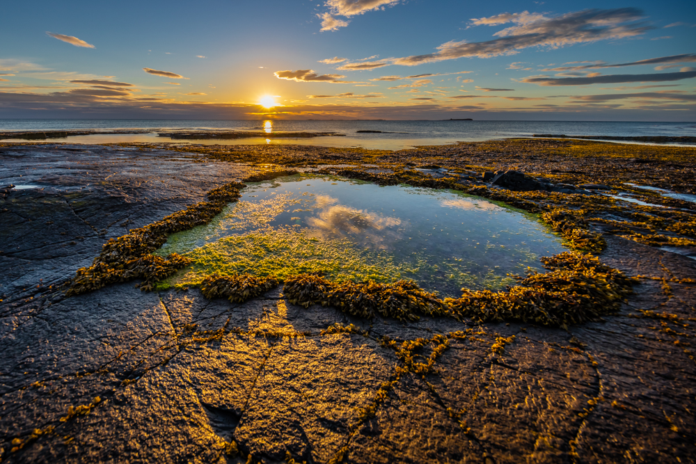 Farn Islands on a summer morning with rockpools