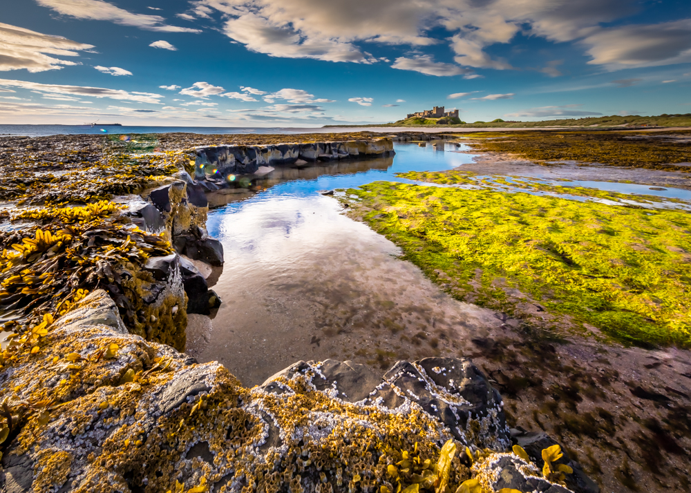 Bamburgh Castle on a summer morning with rockpools